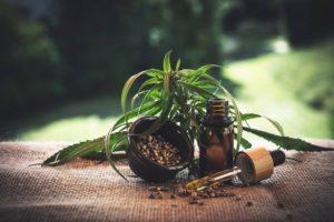 Marihuana lecznicza, co to jest?